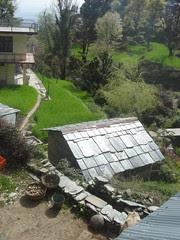 near bhola house