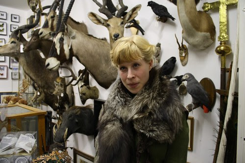 7taxidermy