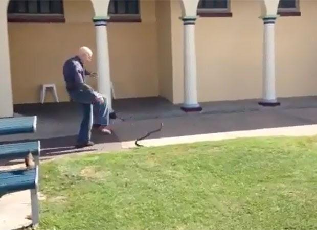 Homem caminhava na calçada quando se deparou com cobra marrom (Foto: Reprodução)