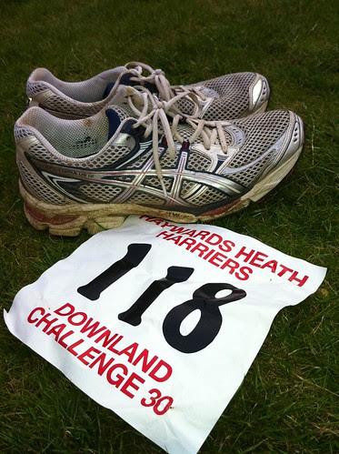 Downland 30 Challenge by ultraBobban