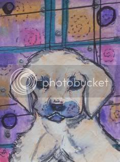 animal, dog, art card, still life, purples, swirls