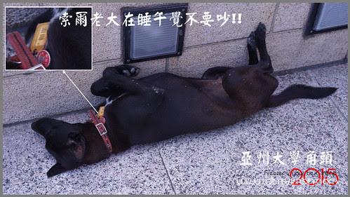 霧峰走走04-2.jpg