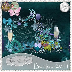 collab_Bonjour2011_pv