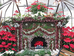 English: Fireplace made entirely of living pla...