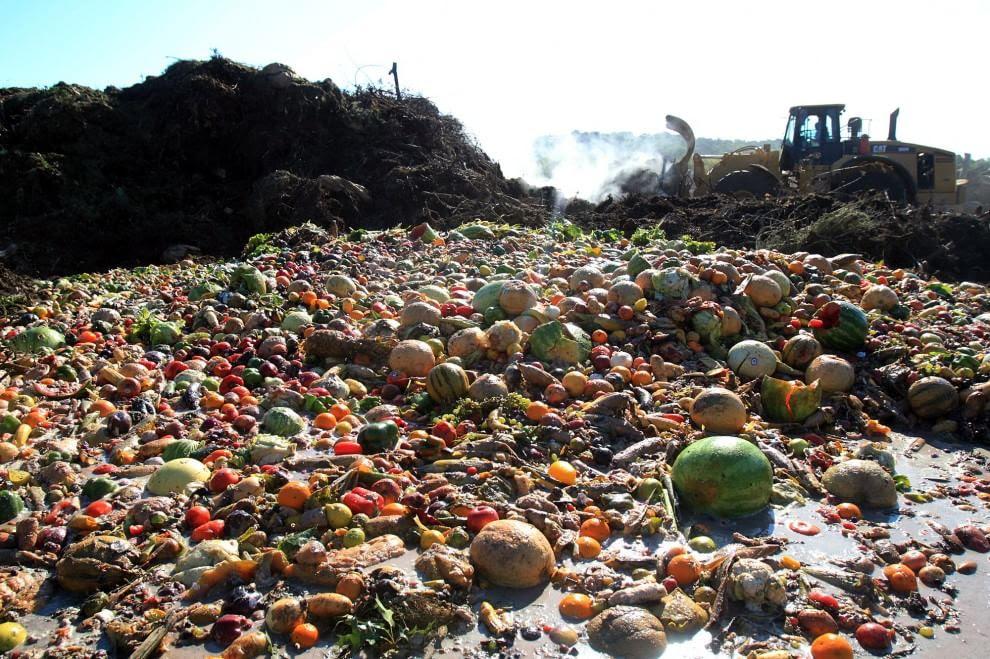 Risultati immagini per sprechi alimentari
