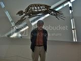 me and prehistoric turtle