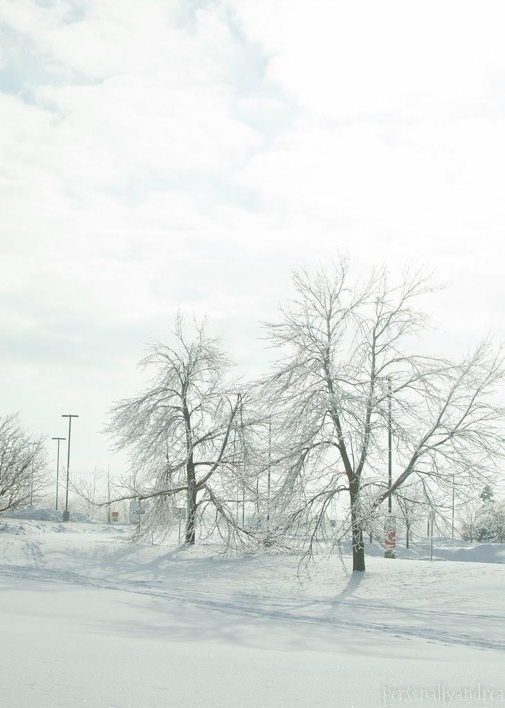 Road Trip | Montreal in Winter | personallyandrea.com