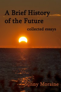 A Brief History of the Future by Sunny Moraine