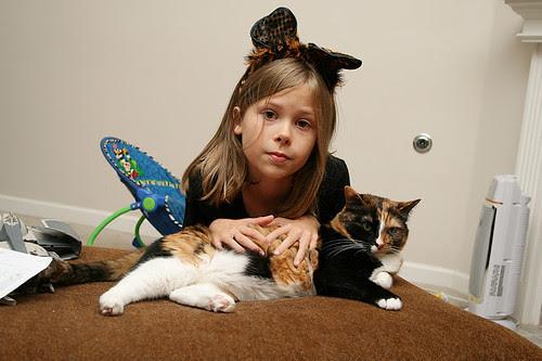 meg cat1