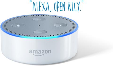 Alexa, Open Ally.