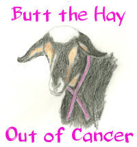 Butt the Hay Out of Cancer