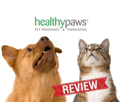 pet insurance reviews  worst