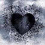 Amor (Foto: Arquivo Google)