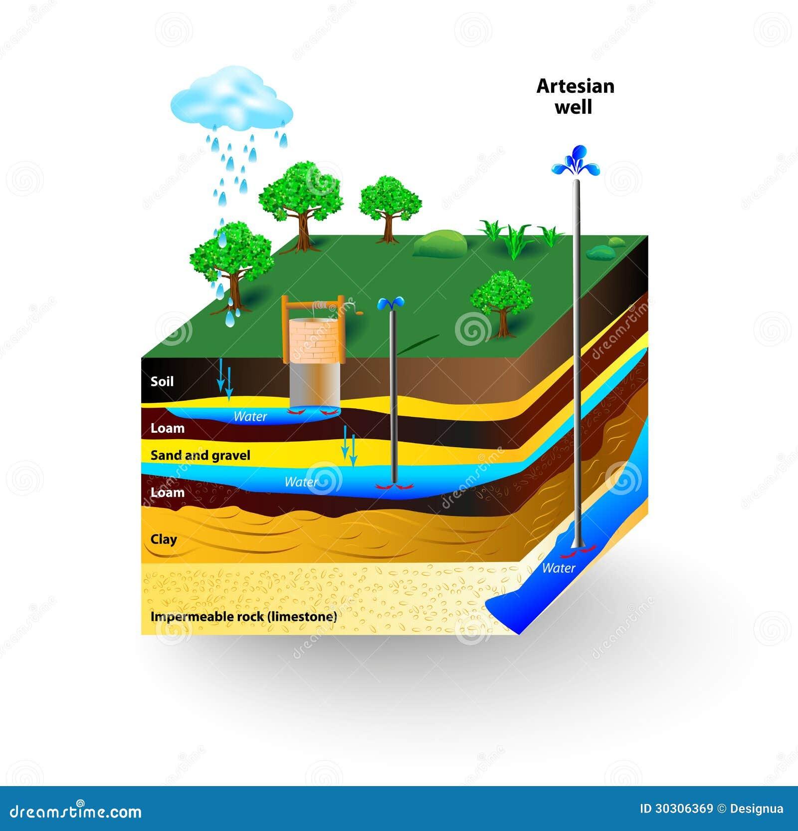artesian water groundwater schematic artesian well typical aquifer cross section vector diagram 30306369