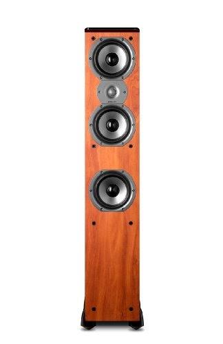 Polkaudio subwofer reviews: Polk Audio TSi400 Floorstanding