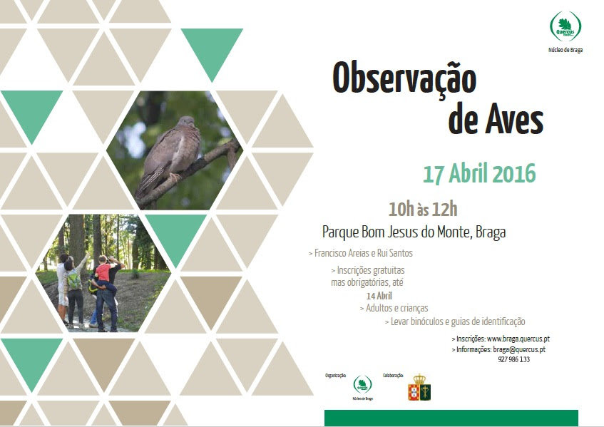 obs.aves 17abril