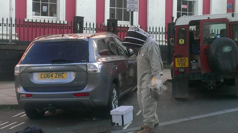 2 дня пчелиный рой атаковал машину этой женщины. Открыв багажник, она поняла почему!