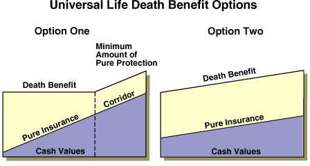 Review of Universal Life Insurance