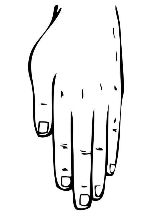 Disegno Da Colorare Mano Cat 10230