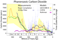 Carbon dioxide variations during the last 500 ...