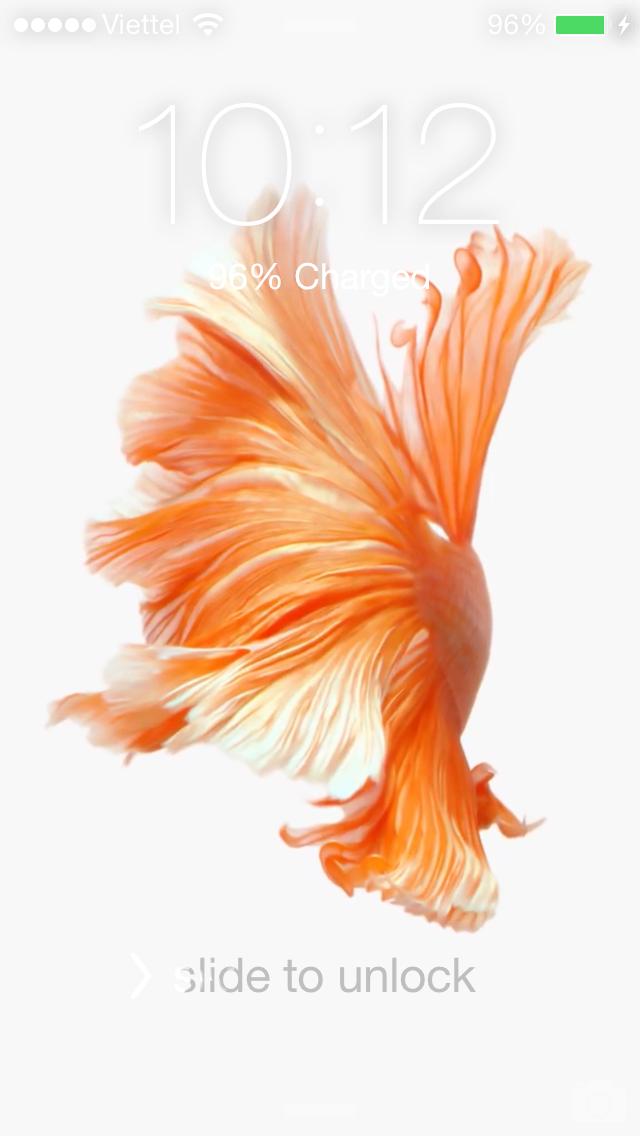 [Hướng Dẫn] Cách Cài Đặt Hình Nền Động iPhone 6s cho iPhone 6,6+,5s,5,5s [Hướng Dẫn] Cách Cài Đặt Hình Nền Động iPhone 6s cho iPhone 6,6+,5s,5,5s [Hướng Dẫn] Cách Cài Đặt Hình Nền Động iPhone 6s cho iPhone 6,6+,5s,5,5s [Hướng Dẫn] Cách Cài Đặt Hình Nền Động iPhone 6s cho iPhone 6,6+,5s,5,5s [Hướng Dẫn] Cách Cài Đặt Hình Nền Động iPhone 6s cho iPhone 6,6+,5s,5,5s [Hướng Dẫn] Cách Cài Đặt Hình Nền Động iPhone 6s cho iPhone 6,6+,5s,5,5s