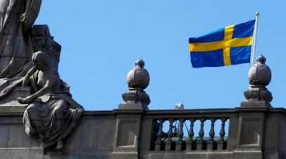Шведский депутат поднял вопрос о поддержании «демократии» на Украине