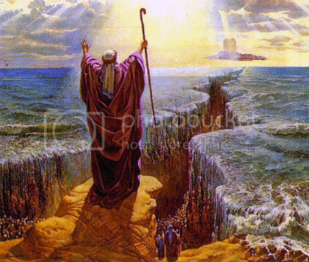 Moses Red Sea Pictures, Images and Photos