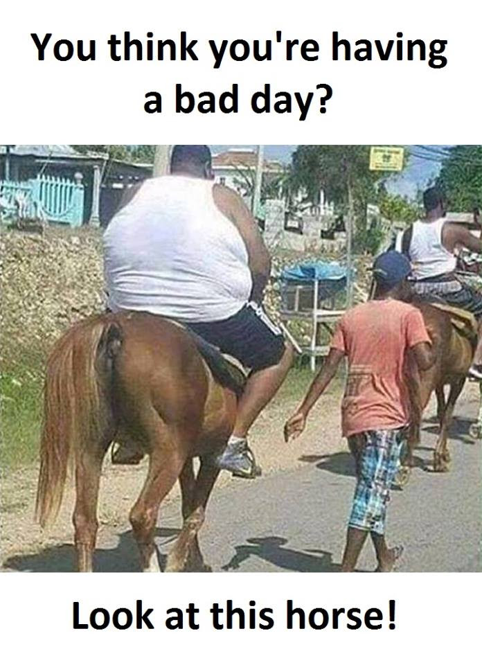 Having A Bad Day Funny Pictures Quotes Memes Funny Images
