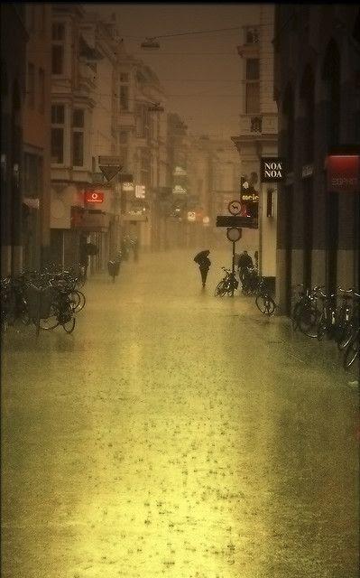 Rain    |  © Frans Peter Verheyen