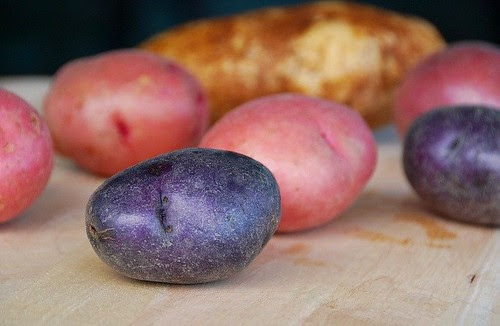 raw red, white, and blue potatoes