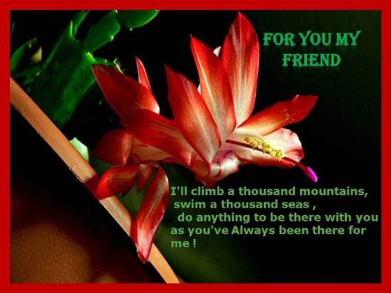 Heartfelt Sentiments For Dear Friend Free Im Always Here For You