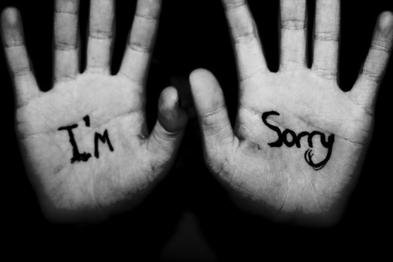 im-sorry