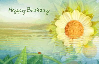 Beautiful Birthday Greeting Card   Happy Birthday