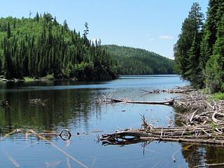 Le Parc national d'Aiguebelle en Abitibi Témiscamingue (Québec, Canada)