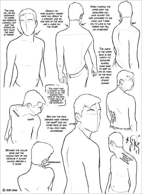 character-male-anatomy63
