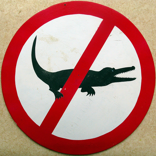 http://upload.wikimedia.org/wikipedia/commons/0/0c/Ne_krokodilu.jpg