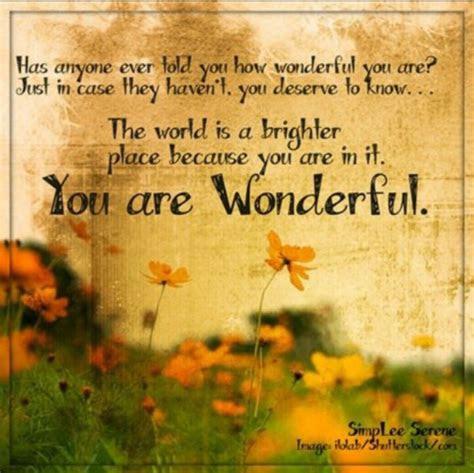 Youre A Wonderful Man Quotes