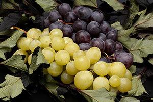 Winogrona Wartość Odżywcza Kalorie Białka Witaminy Minerały