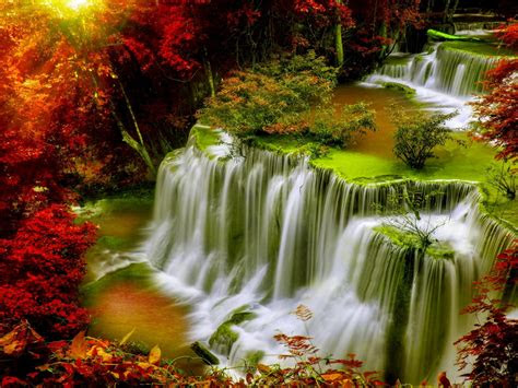 cascade falls autumn forest red leaves sunlight desktop hd