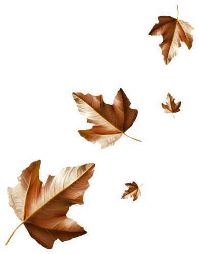 automnestubesfeuilles