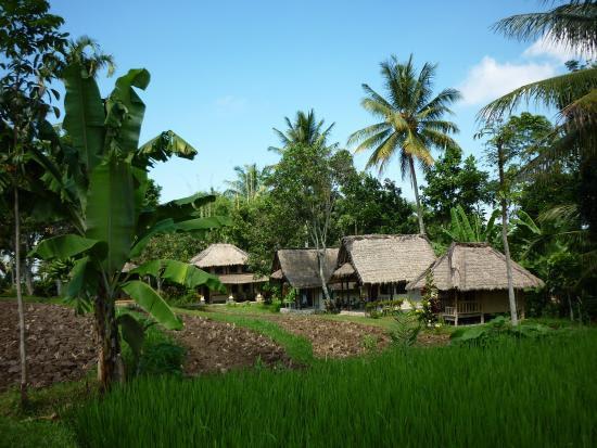 Lombok menjadi salah satu tujuan wisata yang sinar kebintangannya tengah meroket di Indon ExploreBandung; 8 Penginapan Murah di Lombok, Nggak Bikin Kantong Bolong