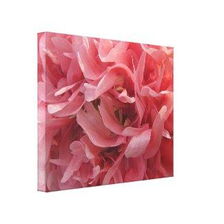 Pink Poppy Petals wrappedcanvas
