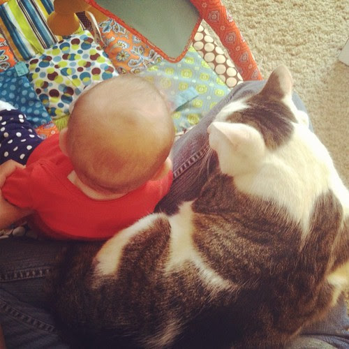 ollie gets jealous