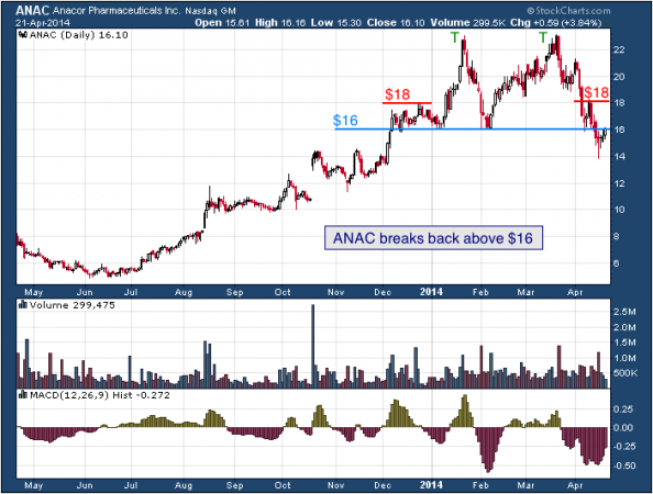 1-year chart of ANAC (Anacor Pharmaceuticals, Inc.)