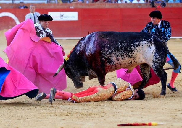 PAY-Bullfighter-dies-at-Feria-del-Angel