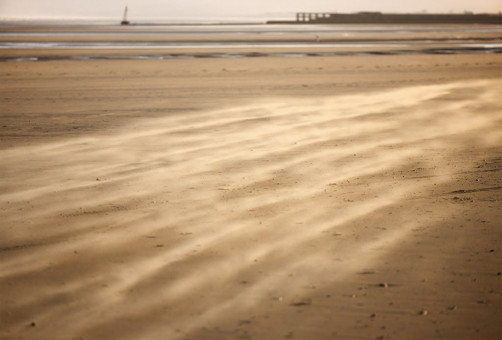 Camber Sandstorm