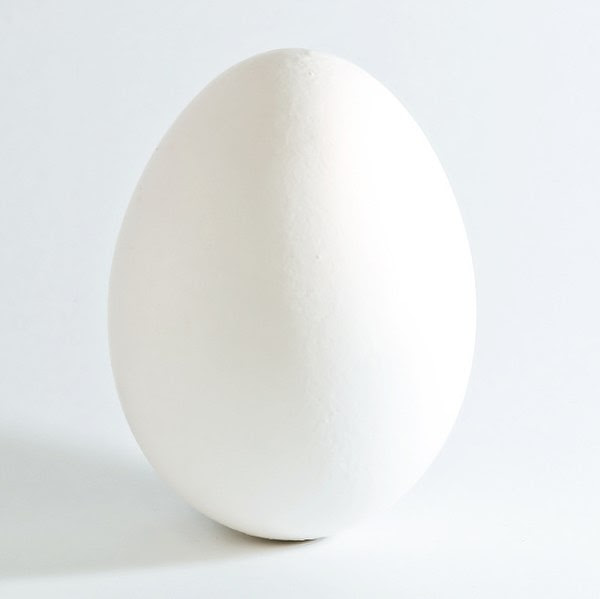 File:White chicken egg square.jpg