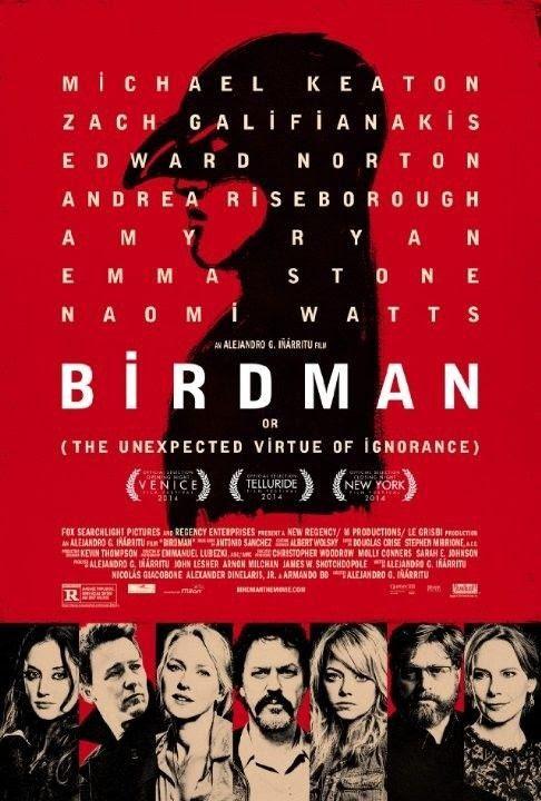 Baixar Filme Birdman   Dublado Download