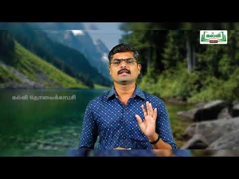 5th Social Science Bridge Course உலகெலாம் ஆற்றங்கரை நாள் 7, 8 Kalvi TV