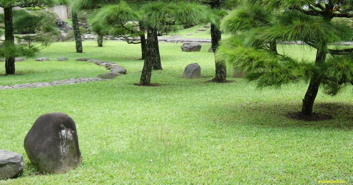 Background Taman Indah 7 Taman Paling Cantik dan Indah